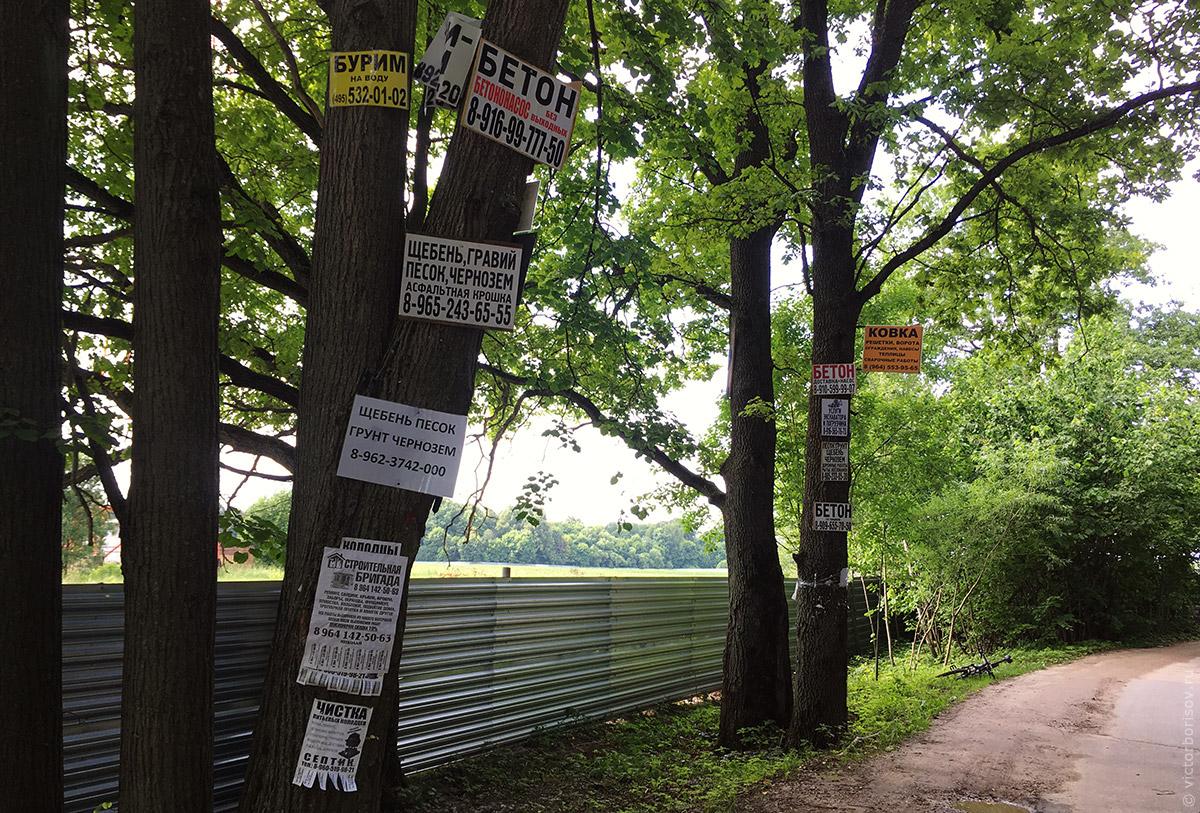 Как бороться с рекламой на деревьях