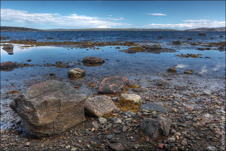 Белое море мурманская область